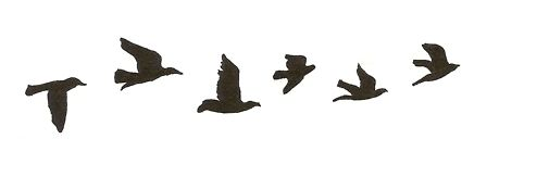 Bird flying silhouette tumblr - photo#2