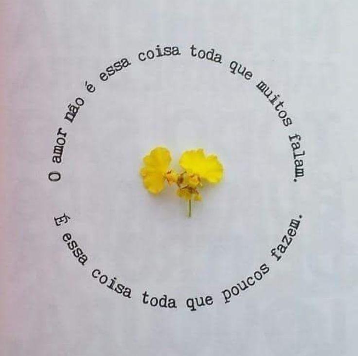 Ah o amor. Sentimento tão sublime que faz morada em todos os corações, mas só é reconhecido e emitido por corações valiosos.