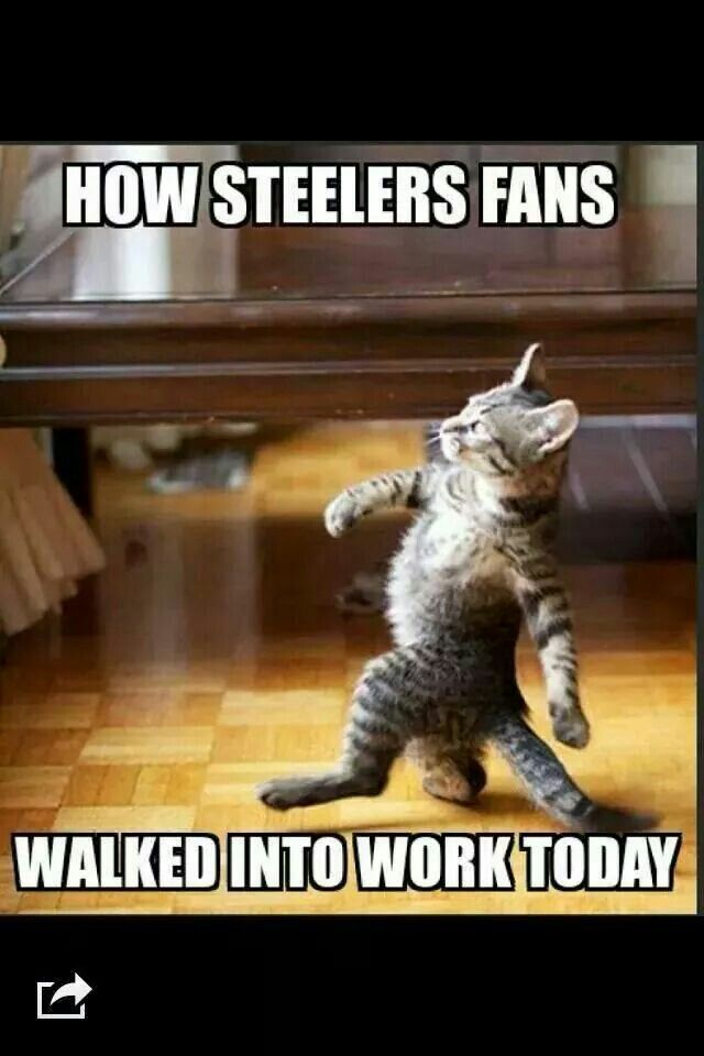 How Steeler fans walked into work today                                                                                                                                                                                 More