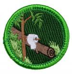 Sam Shakusky- Spoof Merit Badges | Boy Scout Store Spoof Merit Badges