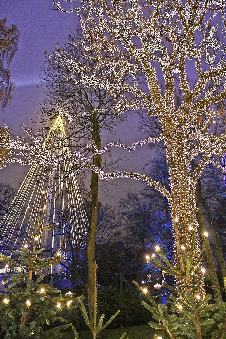505 best holiday exteriors images on pinterest christmas lights