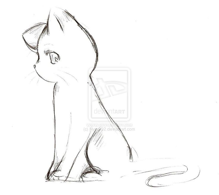 how to draw a cat | Anime Cat Sketch by ~Nyra992 on deviantART