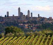 Al wandelend door glooiende wijngaarden verkent u het prachtige Zuid-Toscaanse landschap en gaat u proeven van de beroemde wijnen van Montalcino en Montepulciano.    Meer informatie: http://www.snp.nl/reis/italie/montalcino_en_montepulciano_wijnwandelreis