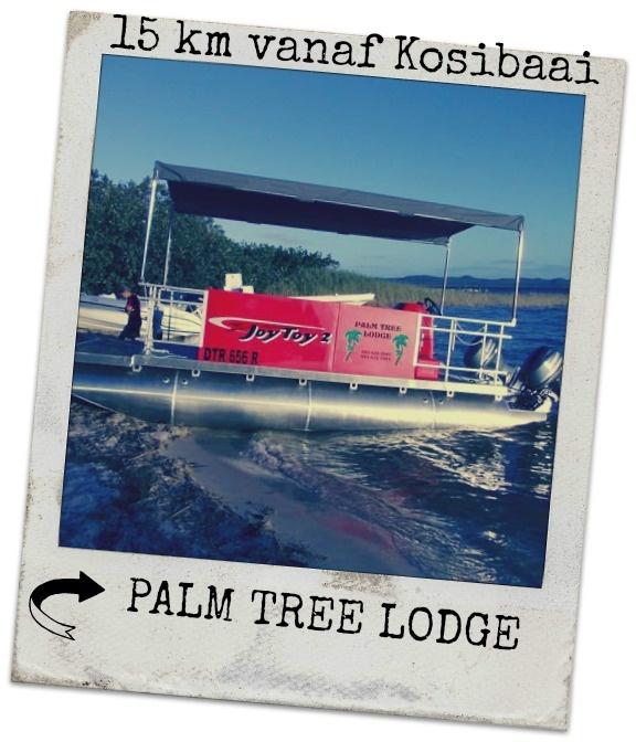 Palm Tree Lodge is sowat 11km vanaf Kosibaai en het 8 staanplekke wat 'n ablusieblok deel en 8 staanplekke met elk 'n privaat badkamer met enkel skottelgoedopwas op stoepie.