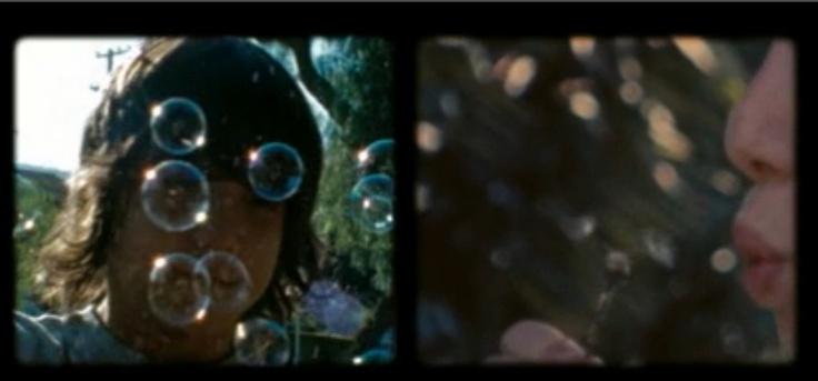 dandelions=bubbles (500 Days of Summer)