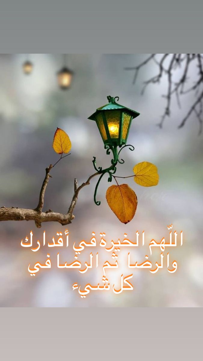 اللهم الخيرة في اقدارك والرضا في كل شيء