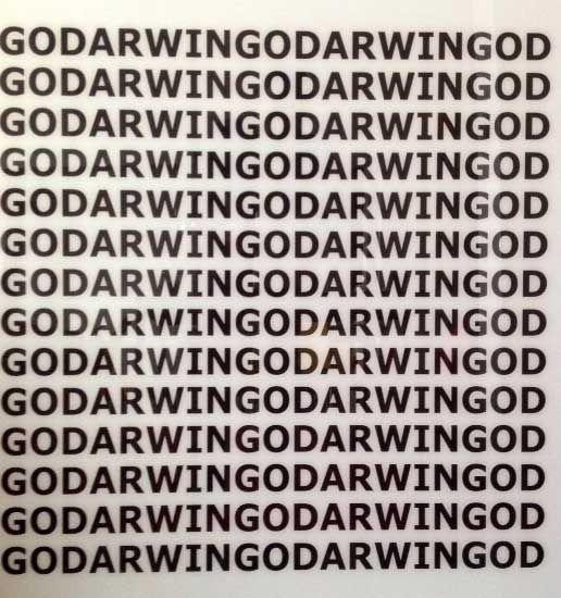 Titus - GODARWING – grafiek