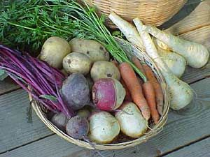 Food Gardening Guide :: National Gardening Association... How to store root vegetables for extended periods of time