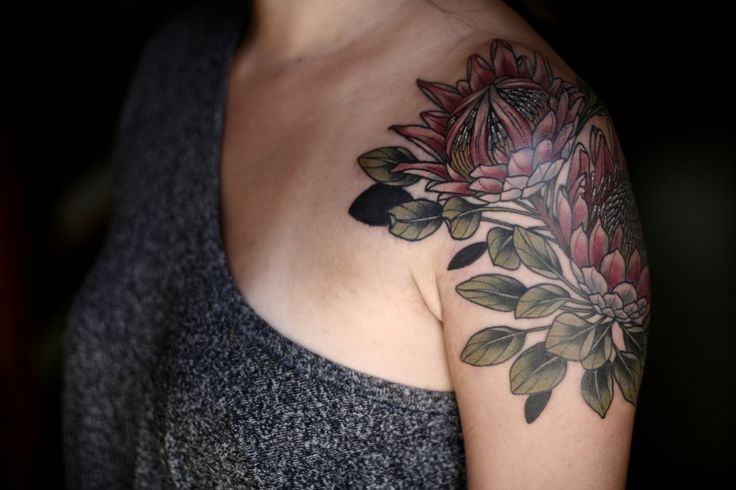 King protea for Jenny. Thank you so much!