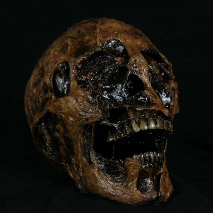 corpsed human skull extreme realism and detail halloween decorations props - Halloween Props For Sale