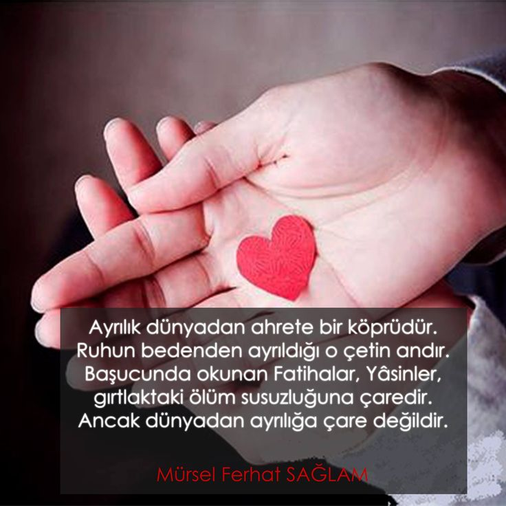 ▶️by Mürsel Ferhat SAĞLAM● #MürselFerhatSağlam #ŞilepDergi #HepOkuyanlar #Aşkzade #Kitap #KitapTavsiye #Sözler #GüzelSözler #ŞiirSokakta #Pin #Tumblr #Share #Romantic #Love #Art #Goog #KitapTanıtım #Book #Follow #Gif #SocialMedia #Twitter #Google #LoveYou #EdebiyatDergisi #Edebiyat #KültürSanat #News #cool #popular #kitapöneri #photo