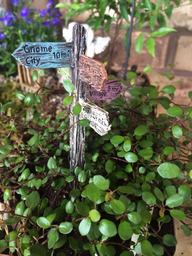 1000+ images about Fairy Gardens -- Faerie Things Gnomes ... - photo#33