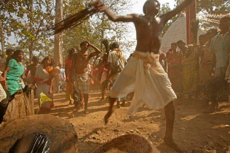 Tribal rituals at Sukma fest