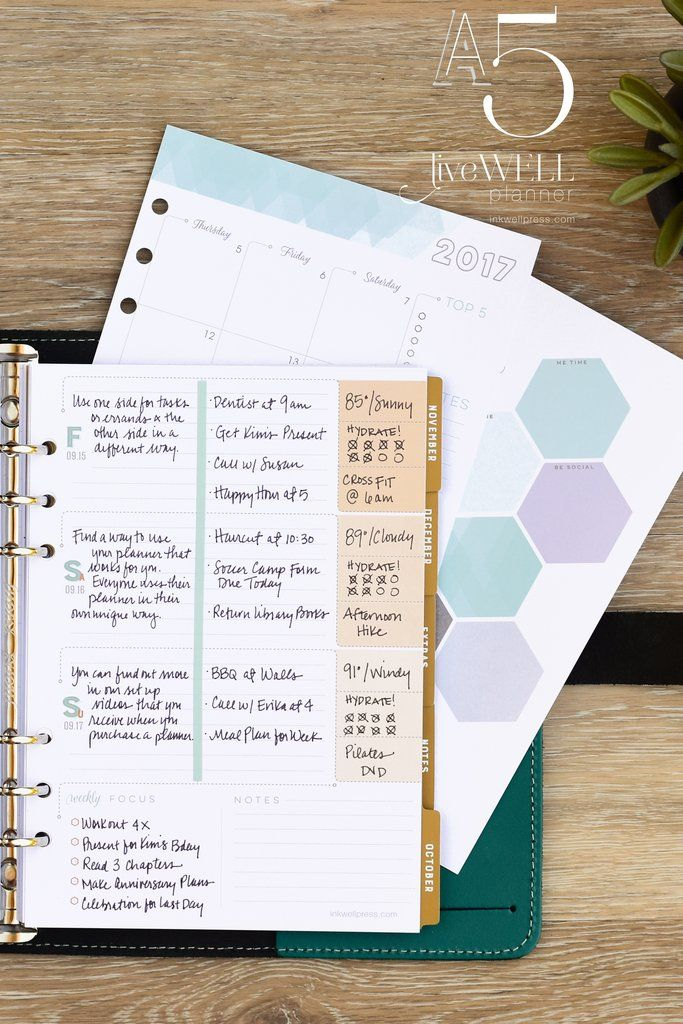 @ohsopinteresting @minimsmelissa I'm so excited about the daily tracker feature on the 2017 @inkwellpress A5 Flex inserts! Can't wait until launch! #lovemyIWP