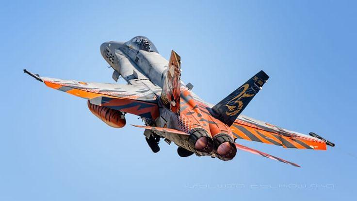 McDonnell Douglas EF-18A Hornet Spain  Air Force