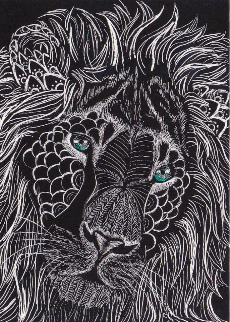 Lion chalk drawing black and white animals art chalk drawing lion beauty details
