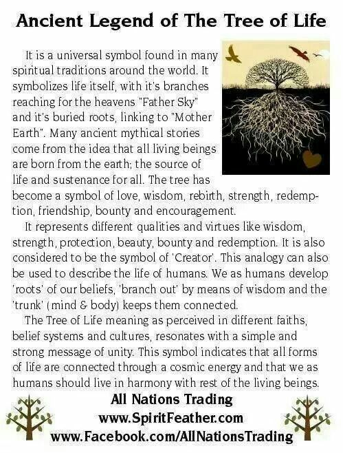 Best 20 Tree Of Life Meaning Ideas On Pinterest