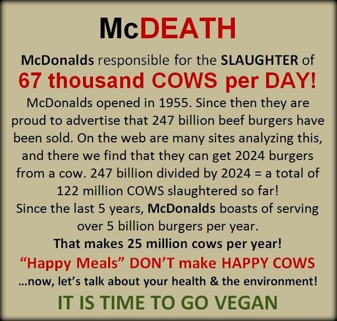 Why did you go vegetarian?