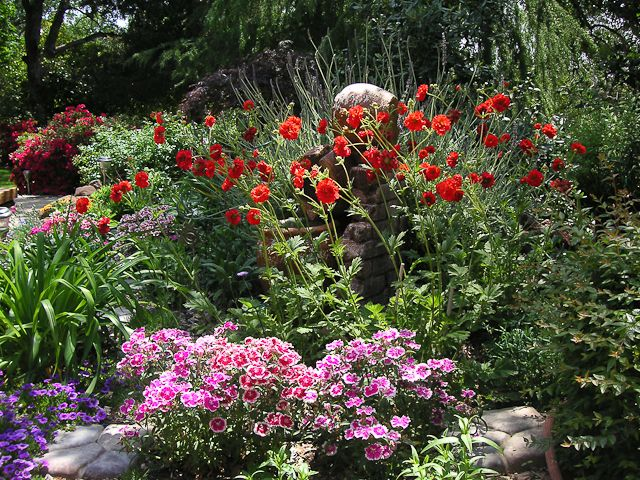 shade garden plans ferns camellias hostas coral bells and many other shade - Plants That Do Well In Shade