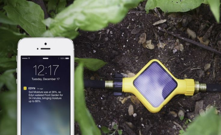 Sistema afere condições do solo e do clima para te ajudar cuidar das plantas
