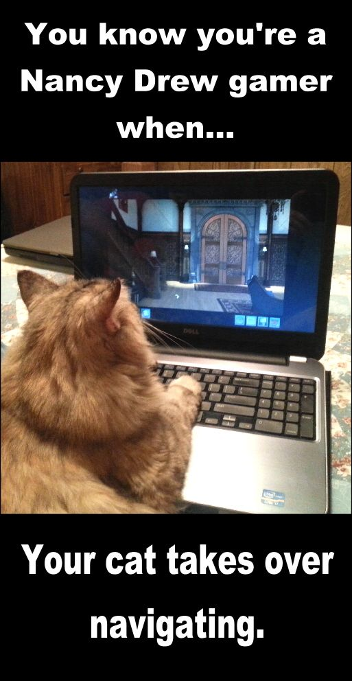 Criticism Is Not In The Play Book When You Re Too: You Know You're A Nancy Drew Gamer When Your Cat Takes