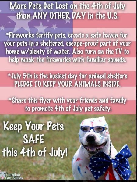 july 4th holiday safety tips