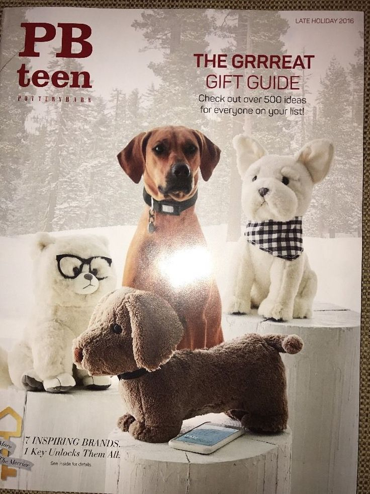 Pottery Barn Teen Late Holiday 2016 Catalog PBTEEN Great Gift Guide Source Book    eBay