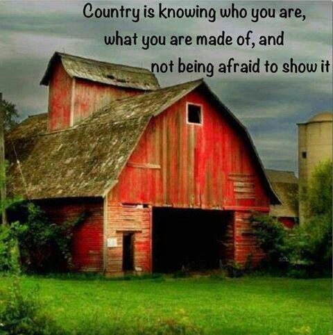 Country is and we don't hide. If you don't like who we are, then don't freaking look. I don't judge you, so don't judge me, and I think we will get along fine.