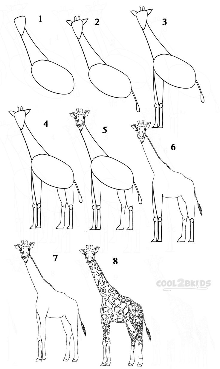In This Drawing Lesson We'll Show You How To Draw A Realistic Giraffe In