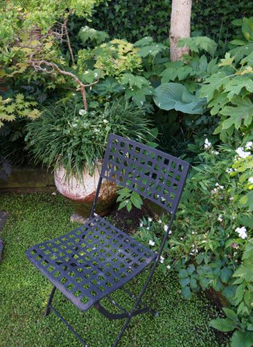 Nelmac Garden Marlborough #onlymarlborough #brillianteveryday
