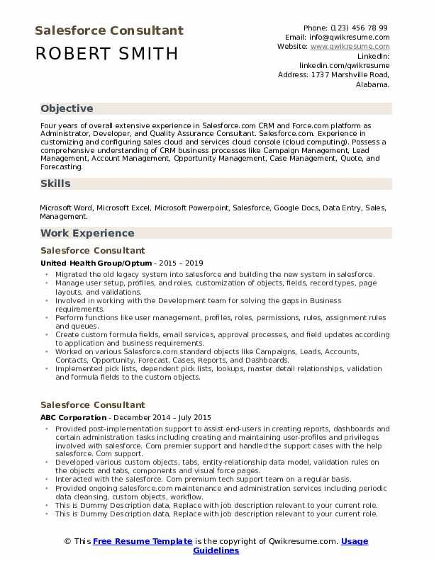 Salesforce Consultant Resume Samples Resume No Experience Resume Business Analysis