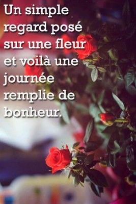 <p></p><p>Un simple regard posé sur une fleur et voilà une journée remplie de bonheur (Um simples olhar sobre uma flor e eis um dia cheio de felicidade).</p>