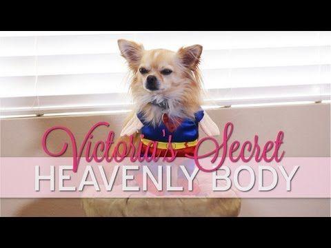 19 Min Victoria Secret Workout: Full Body