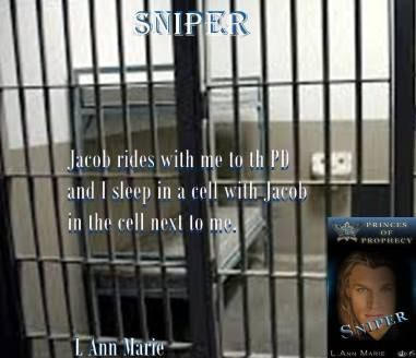 BLACKHAWKS HAVE SKILLS!! MEET SNIPER A MAN STRUGGLING WITH HIS DEMONS SNIPER: PRINCES OF PROPHECY BOOK 6 BY L.ANN MARIE