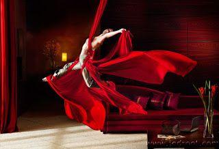 Rambling Rose: tonos de rojo
