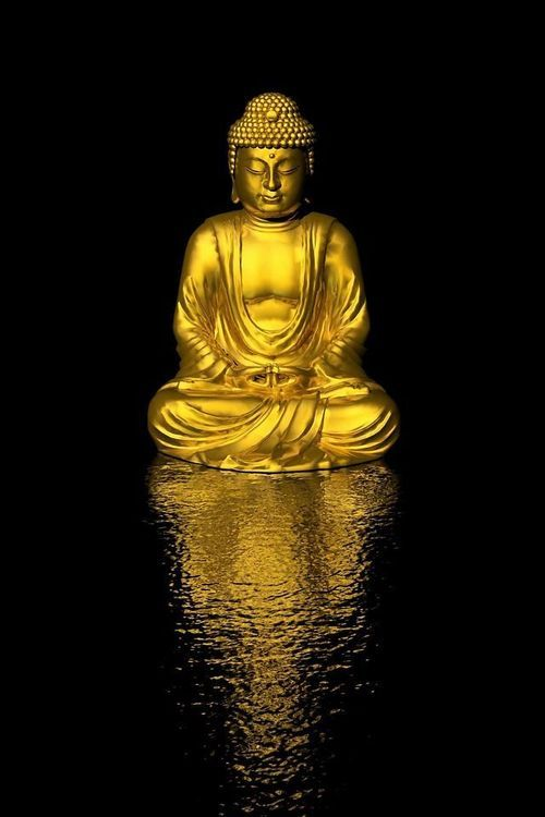 Spiritual Gangster Quotes Wallpaper 16 Best Buddhas Images On Pinterest Spirituality