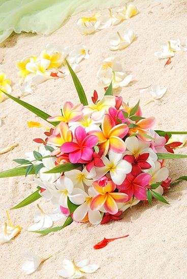 Frangipanis on the beach... I love this bouquet also, it looks so tropical