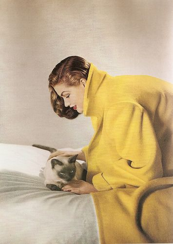 Photo by Louise Dahl-Wolfe for Harper's, 1950s. #vintage #cats #fashion