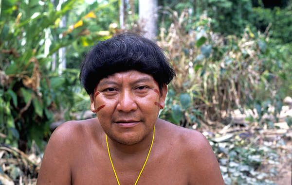 Yanomami shaman Davi Kopenawa, who signed the open letter warning of an unfolding genocide. As the Amazon reels from the onslaught  the indigenous tribes are crying out for help.  WE have the resources to FIGHT - the tribes haven't - THEY NEED US TO MOUNT THE PRESSURE on Governments!