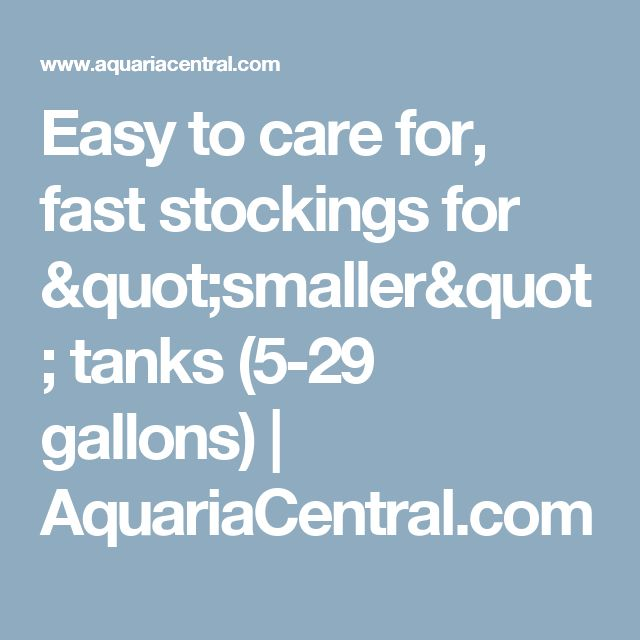 29 best planted tanks images on pinterest fish aquariums for Easy to care for fish