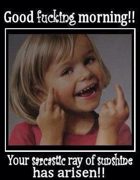f995d7a6bcf6fbe13331b3ba74f6599a morning memes funny pics 30 best good moanin images on pinterest funny shit, funny pics,Good Monday Morning Meme