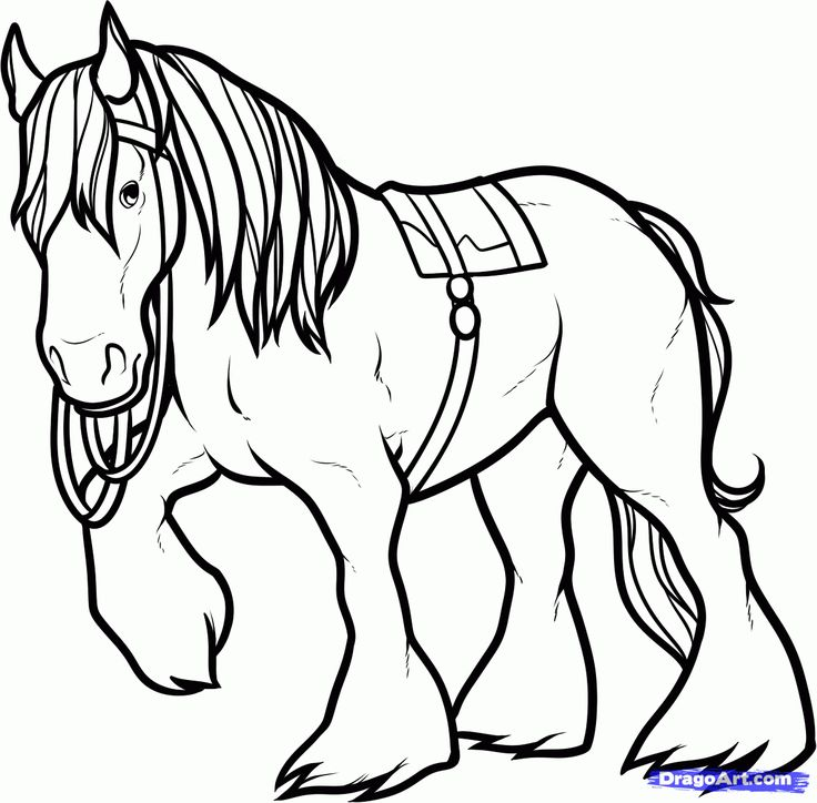 horse coloring pages how to draw angus angus the horse brave step