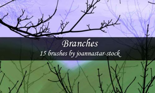 A Compilation of High Quality Tree Branch Brushes for Free on http://naldzgraphics.net