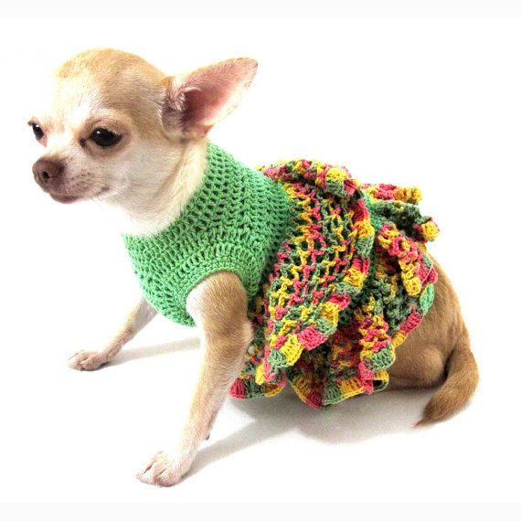 The 25+ best Chihuahua clothes ideas on Pinterest | Pet ...