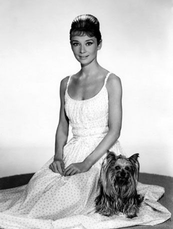 Audrey and her Yorkie.