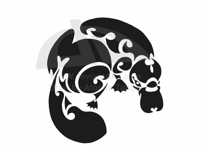 Platypus tattoo by Atomic-Tanuki