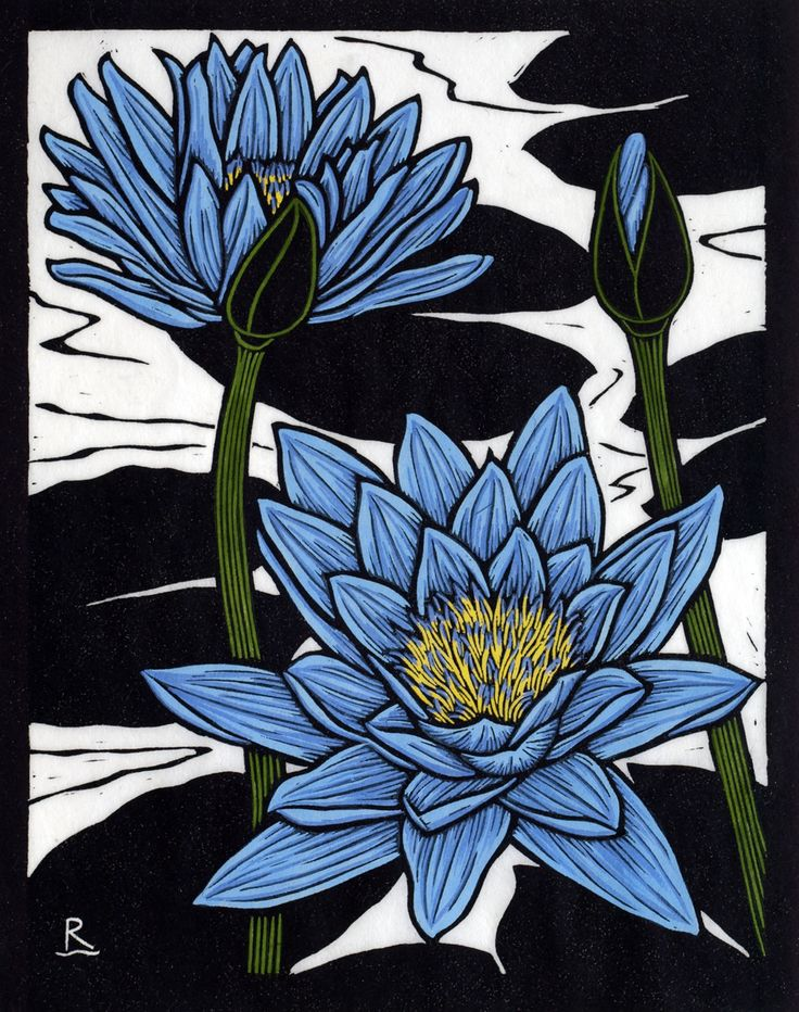 Blue Waterlily - Hand coloured linocut on handmade Japanese paper by Rachel Newling