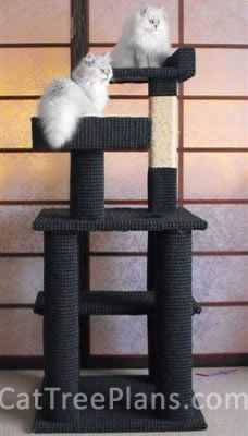 Cat Tree Plans - Chico and Bella - New Zealand