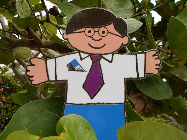 Flat Stanley - St. Thomas Public Library's Character-in-Residence: 2013 Bahamas Adventure, Flat Stanley Goes Gardening, Sea Grape Bush