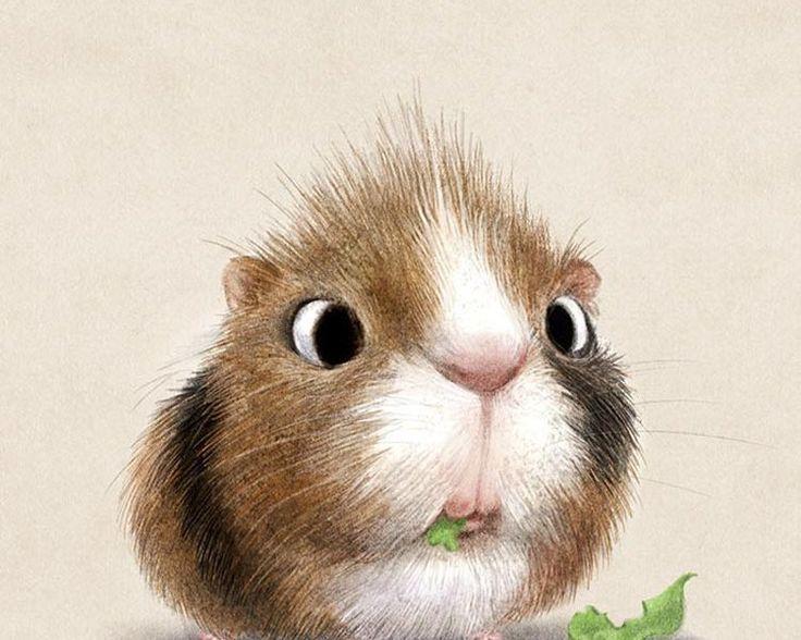 Des dessins d 39 animaux trop cute par sydney hanson dessins graphismes etc pinterest sydney - Dessin anime qui fait peur ...